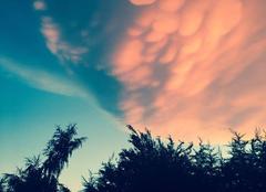 Ciel Epinouze 26210 Un ciel d'Epinouze