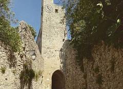 Chaleur Vaison-la-Romaine 84110 Chaleur estivale, entendez vous les cigales?