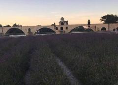 Ciel Avignon 84000 Coucher du soleil sur le pont