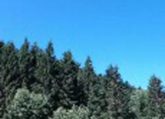 Ciel Xonrupt-Longemer 88400 Xonrupt longemer