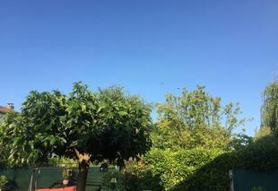 Ciel Reze 44400 Un beau ciel bleu