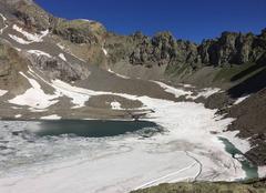 Faune/Flore Pelvoux 05340 Lac  d eychauda