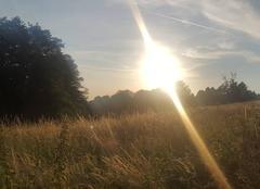 Chaleur Verneuil-sur-Vienne 87430 Derniers rayons de la journée