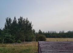 Brouillard Parentis-en-Born 40160 Brouillard