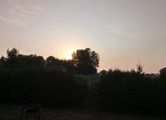 Chaleur Gaillac 81600 Levé soleil