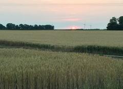 Chaleur Ardelu 28700 Lever de soleil le jour de l'été