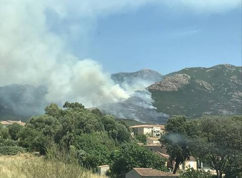 Incendie de foret