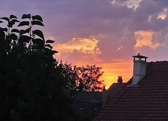 Ciel Sivry-Courtry 77115 Couché de soleil