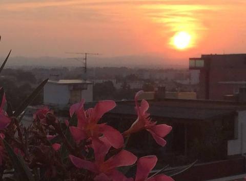 Presque coucher de soleil de la terrasse