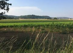Chaleur Mours-Saint-Eusebe 26540 Canicule sur les champs