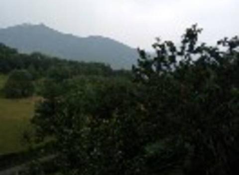 Mont de galie 31510