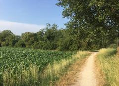 Ciel Mours-Saint-Eusebe 26540 Sentier de campagne cette après-midi