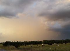 Orage Moisdon-la-Riviere 44520 Cellule orageuse avec le soleil couchant