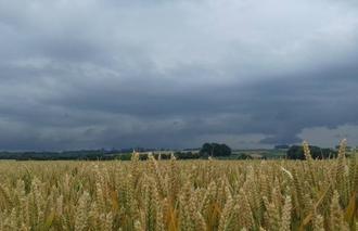 Ciel Forceville-en-Amienois 80560 Malheureusement pas d'orage ...