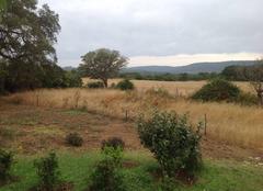 Pluie Figari 20114 Petite pluie