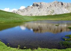 Faune/Flore Molines-en-Queyras 05350 Entre ciel et montagne