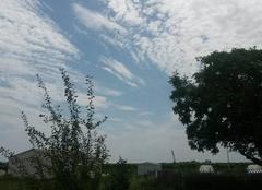 Ciel Tesson 17460 Temps clair et lourd 30,9 degrés
