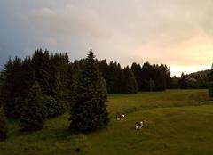 Ciel Taninges 74440 Ciel orageux sur Le Praz-de-Lys