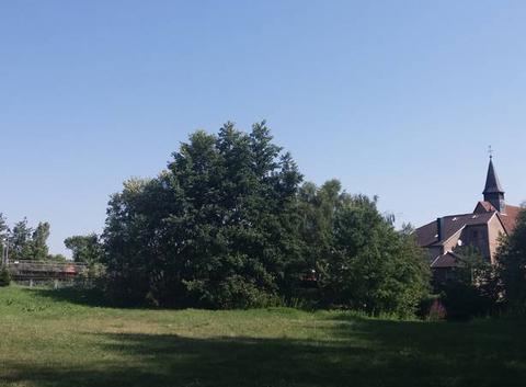 Temps très chaud en Alsace.