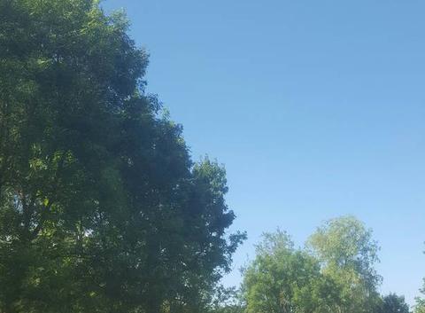 Belle journée d'été...