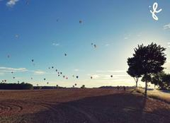 Insolite Chambley-Bussieres 54890 Mondial air ballon
