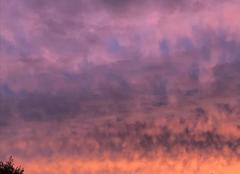 Ciel Boitron 61500 Très belle couleur du ciel