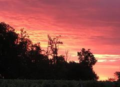 Ciel Thenac 24240 Le ciel qui rougeoie...