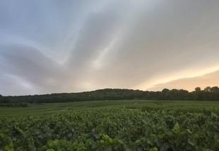 Ciel Villers-Marmery 51380 Villers-Marmery 51380 au dessus du Mt Grippet avant l'orage du 31-07-2017