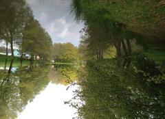 Faune/Flore Seppois-le-Bas 68580 Reflets dans l'eau