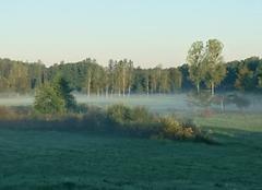 Brouillard Linexert 70200 Matin brumeux
