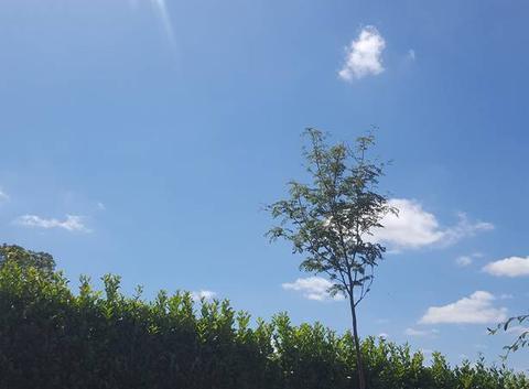 Plein soleil à Villetoureix