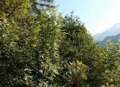 Ciel Vaujany 38114 Beau  temps en Isère