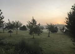 Ciel Mauves-sur-Huisne 61400 Petit matin