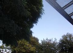 Chaleur Chatillon-sur-Thouet 79200 Soleil