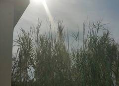 Ciel Aniane 34150 Soleil sur aniane