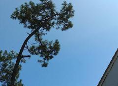 Ciel Saint-Georges-de-Didonne 17110 Wouahhh