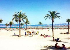 Ciel Palma 07001  Playa