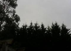 Pluie Montauban 82000 Montauban sous la pluie