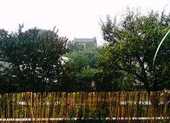 Pluie Toulouse 31300 Grosse Averse