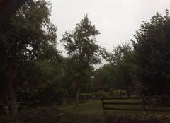 Pluie Lesmenils 54700 Pluie forte