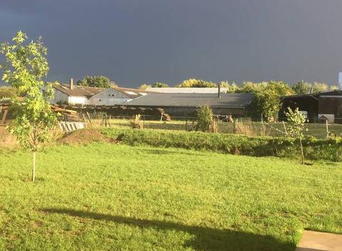 Soleil après l'orage