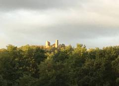 Insolite Montmorin 63160 Château de Montmorin