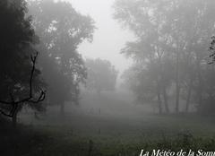 Ciel Forceville-en-Amienois 80560 Brouillard sur la Somme ...