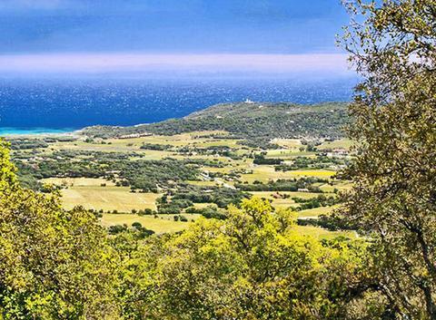 Une vue de Pampelonne et de Cap Camarat