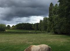 Nuages Libourne 33500 Nuage de pluie