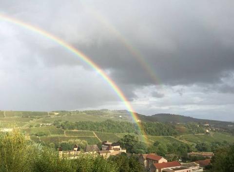 Arc en ciel sur Chasselas Bourgogne Sud