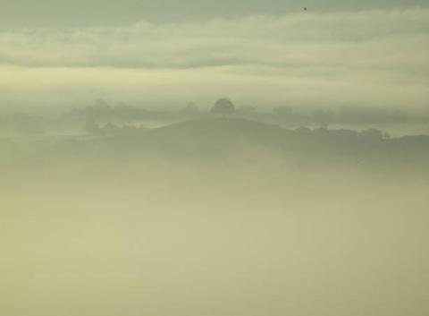 8h20 - Brouillard ensoleillé sur l'arbre seul de Maurs (15)