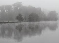 Brouillard Auxerre 89000 Brouillard matinal