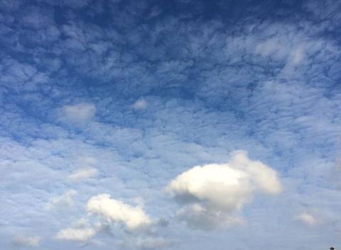 Des moutons se promènent dans le ciel de Plouha
