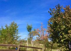 Ciel Lesmenils 54700 Belle journée de pré-automne